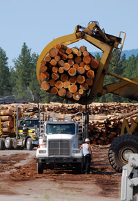 log mill trucks