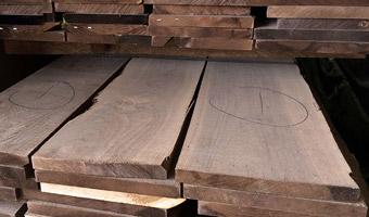 grading walnut lumber at J Gibson McIlvain